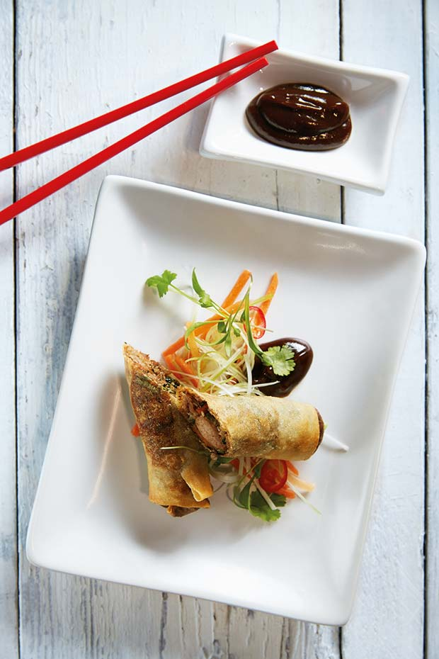 duck-spring-roll-(2)[6]